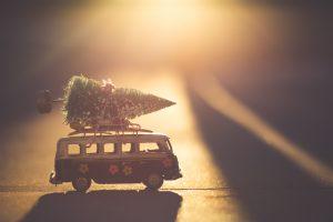 10 tips om te besparen op je kerstboom - budgetexpert en coach Sara Van Wesenbeeck, Hack je budget - www.barkingdogs.be