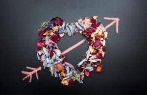 Organiseer je partner - tips van Sara Van Wesenbeeck - Valentijndag - www.barkingdogs.be