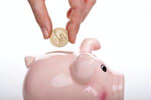 Gratis budgettips via Whatsapp van expert Sara Van Wesenbeeck - schrijf nu in - www.barkingdogs.be