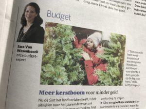 Meer kerstboom voor minder geld - budgettips van expert Sara Van Wesenbeeck - www.barkingdogs.be